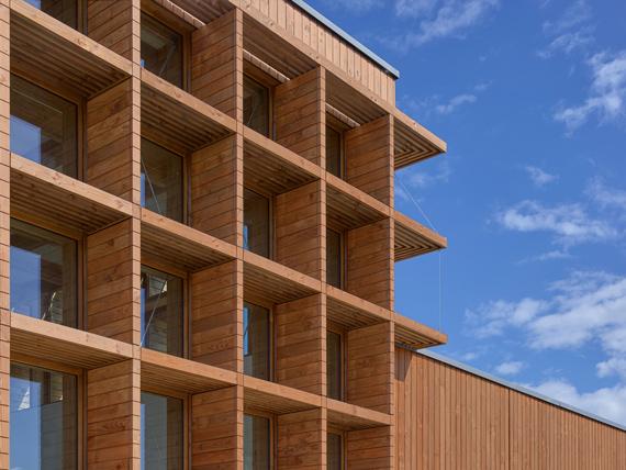 Exterior facade with Wolmanit® ProColor Douglas fir brown