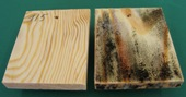 Protected vs. unprotected wood, moldy wooden board