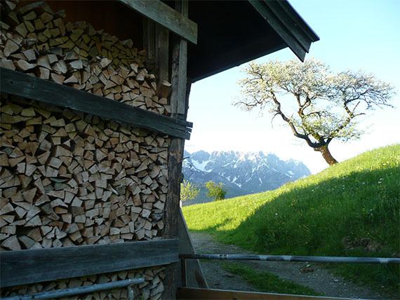 Holzlager im Gebirge