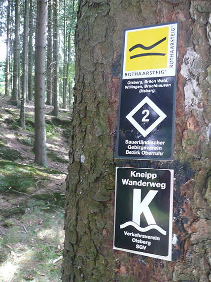 Wanderwege an Baumstamm